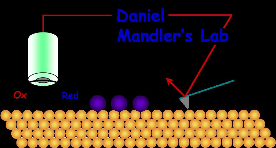 Prof. Daniel Mandler