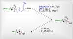 Photolabile Protecting Group-Mediated Synthesis of 2-Deoxy-Glycosides