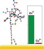 A zinc selective oxytocin based biosensor
