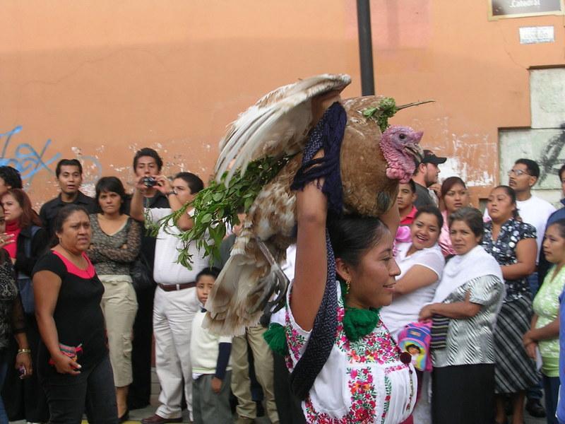 Guatamala, 2008