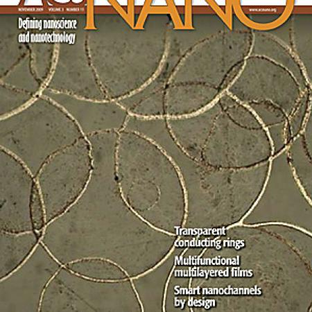 Journal cover in ACS Nano