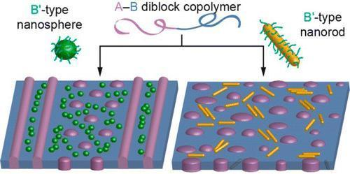 41. co-assembly of B'-type nanorods in A-B block copolymers