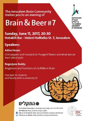 Poster for Brain & Beer