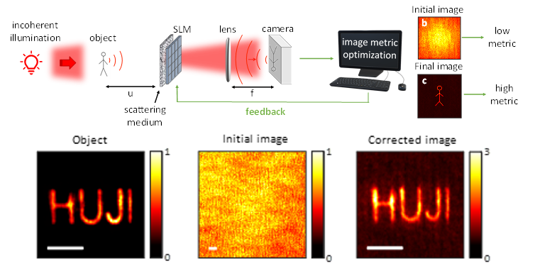 Optical imaging through scattering media