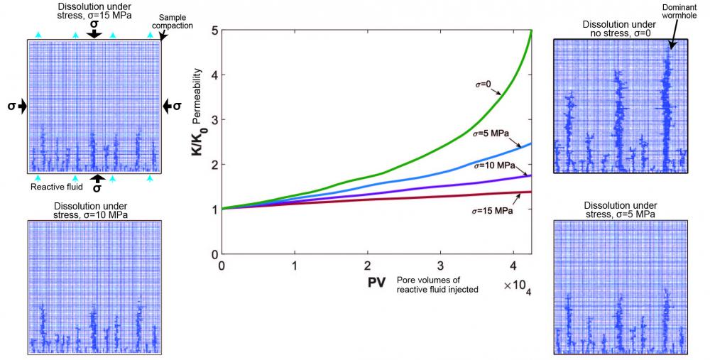 Permeability evolution through dissolution under stress