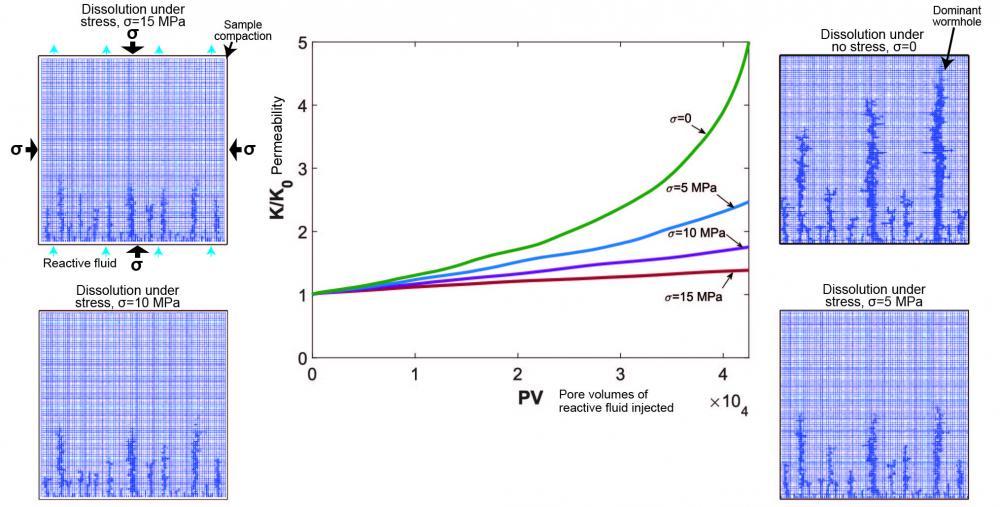 Permeability evolution through dissolution under stress