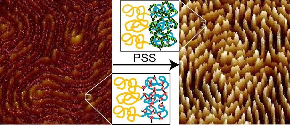 45. striped nano-patterned PEMs