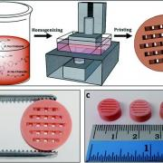 Description of the process: Contaminant Removal with 3D Printed Zeolite Monoliths