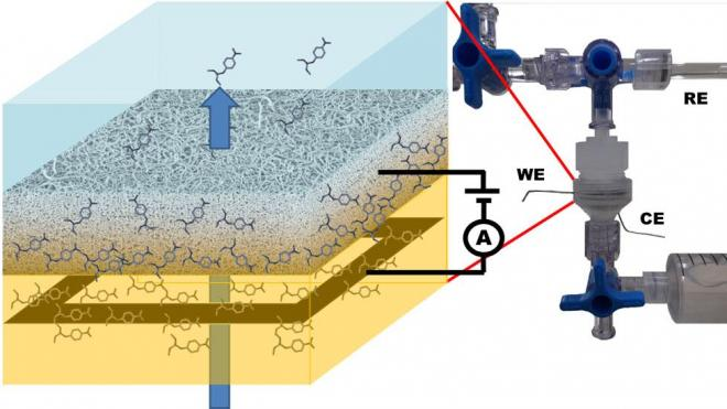 Detection of organic pollutants by flow-through carbon nanotubes electrochemical sensor