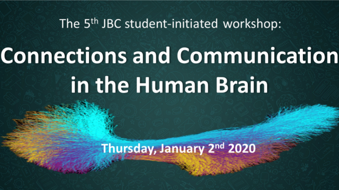 Connections and Communication in the Human Brain