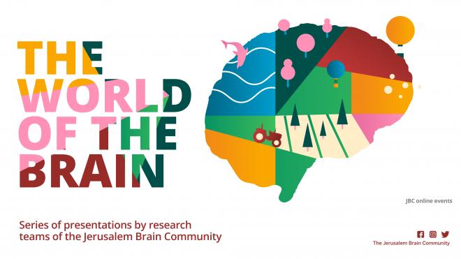world of the brain