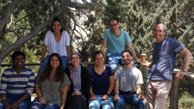 The Shenhar Group