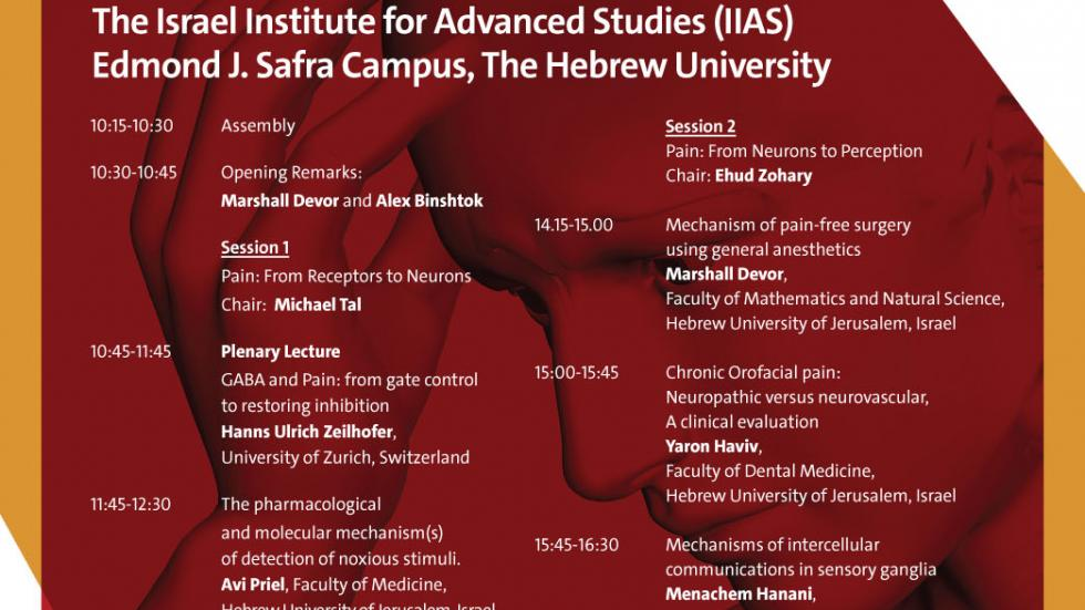 Pain in Jerusalem: A symposium on Pain Science and Medicine, May 4, 2017