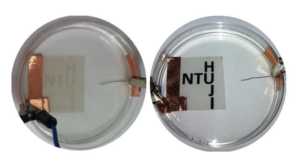 Picture of electrochromic devices fabricated using self assembled transparent electrodes