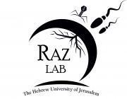 logo_6_-_raz_lab.png